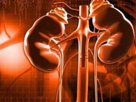 當腎衰竭腎臟病遇上幹細胞療法!讓腎臟恢復健康!