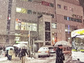 東京下雪了!年輕人連夜搭車逃離東京和新冠肺炎!
