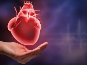 泛心血管疾病的預防與治療