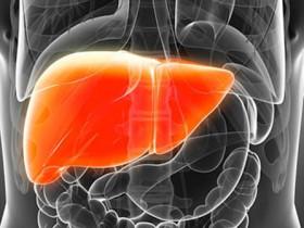 肝病患者怎樣飲食治療比較好!?