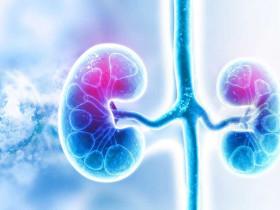 腎衰竭很可怕?為了你的腎臟健康有3件事千萬別做