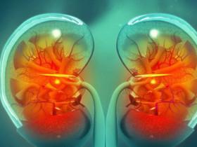 慢性腎臟病治療的新契機