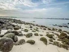 新加坡隱秘的看海角落