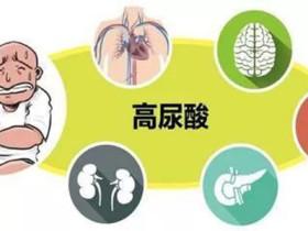 尿酸高會引起什麼症狀?尿酸多高才會引發腎臟病變?