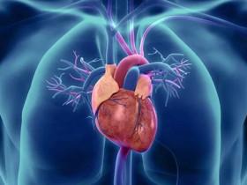 幹細胞VS心臟病,還你一顆跳動的心