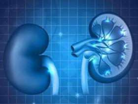 腎臟病!?哪些因素會影響腎功能?